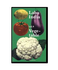 Labo India vol.9 表紙
