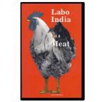 Labo India vol.8 表紙